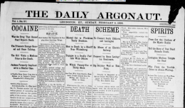 Masthead and Above the fold for The Daily Argonaut